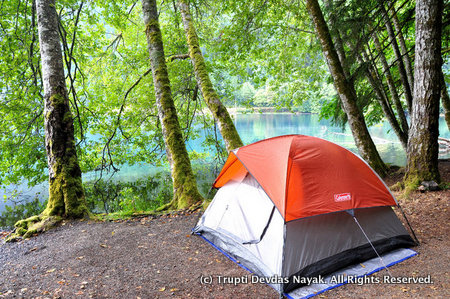 Camping at Lake Crescent Olympic National Park