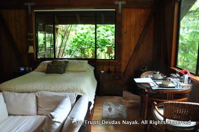 Cozy-Room-Hale-Manaluna